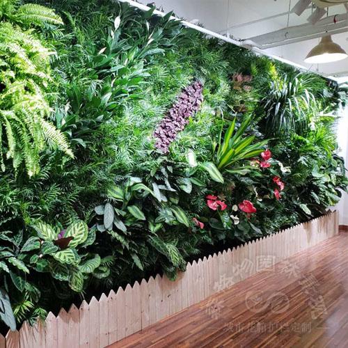 垂直绿化种植,立体生态墙