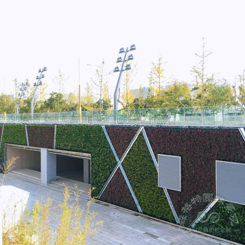 下沉广场垂直绿化项目