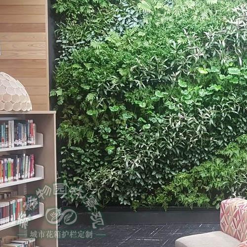 学校图书馆植物墙,工程项目绿化公司