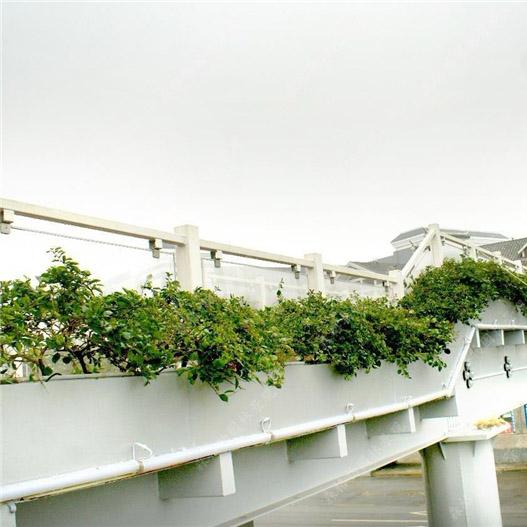 桥梁玻璃钢花箱