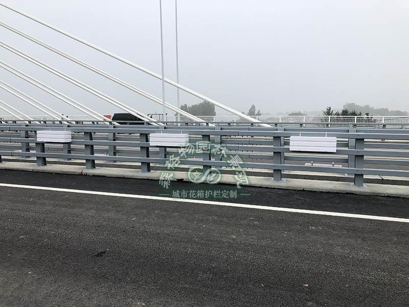 安徽滁州 2公里桥梁花箱