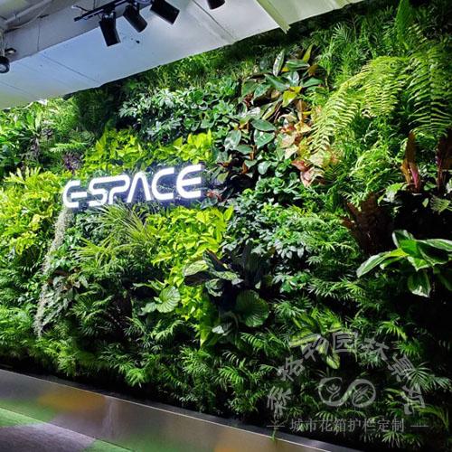 室内立体绿化生态墙