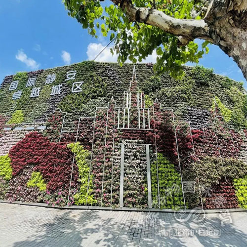 户外公园广场垂直绿化墙