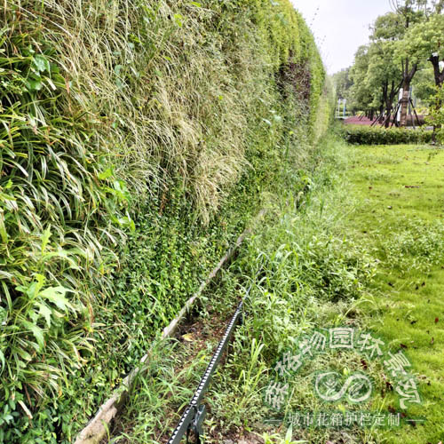户外大型垂直绿化墙