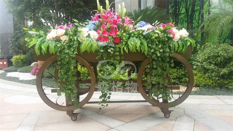 家用室内花箱适合种植什么花?