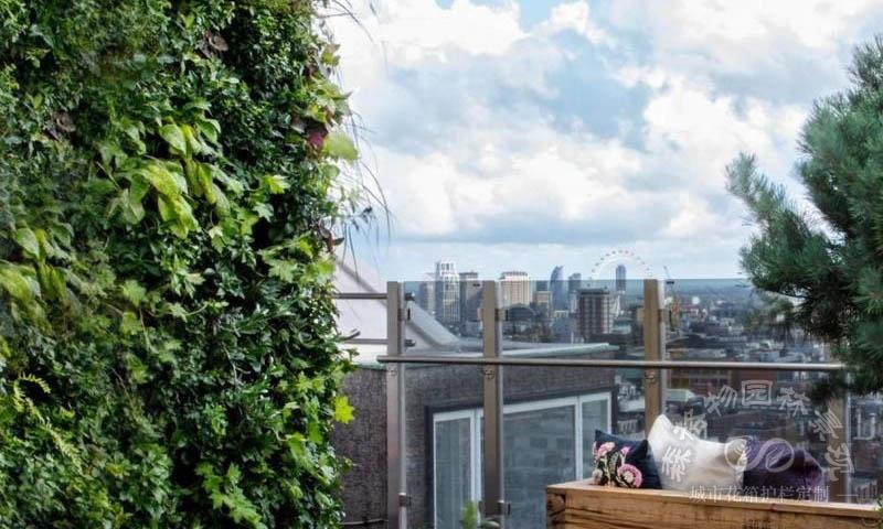 屋顶绿化算绿化率吗?