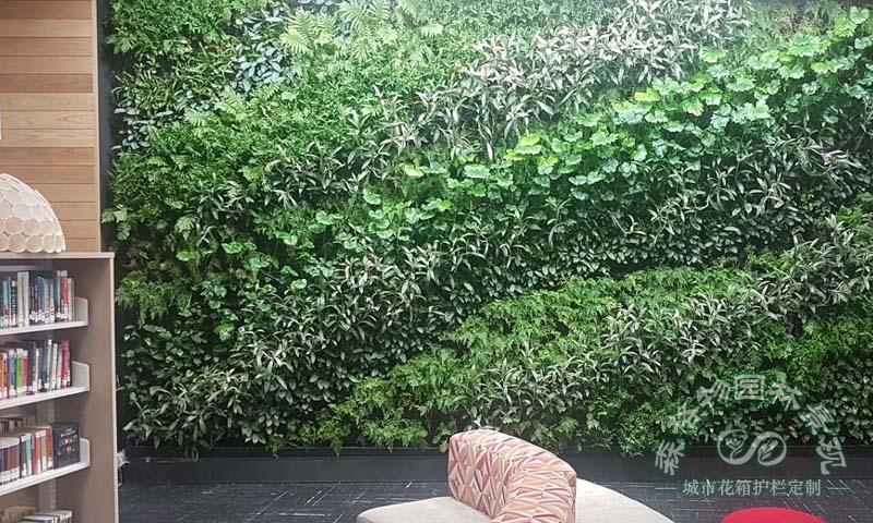 室内植物墙的建造流程有几个步骤